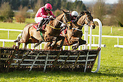 Ladbrokes Ireland Boyne Hurdle at Navan Race Course, 14th February 2016<br /> Noel Meade trained Snow Falcon with Sean Flanagan in the saddle clears the last together with Lieutenant Colonel but Snow Falcon goes on to win the Ladbrokes Ireland Boyne Hurdle<br /> Photo: David Mullen / www.quirke.ie ©John Quirke Photography, Unit 17, Blackcastle Shopping Cte. Navan. Co. Meath. 046-9079044 / 087-2579454.