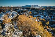 Autumn in Dimmuborgir