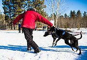 A handler guides a team to the start line during the Babe Southwick Memorial race on Feb.18, 2017 outside Whitehorse.