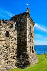 Front elevation of St Andrews Castle, St Andrews, Fife, Scotland<br /> <br /> (c) Andrew Wilson | Edinburgh Elite media