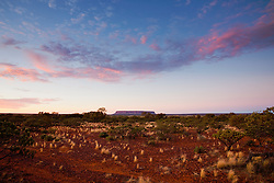 Attila, or Mount Conner, often mistaken for Ayers Rock is a 700 million year old table top mountain in the southeast corner of the Northern Territory,  the gibber plains and Mount Conner seen at dusk, Northern Territory,  Australia