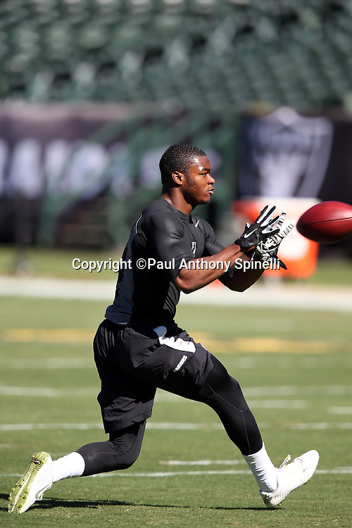 Oakland Raiders wide receiver Amari Cooper (89) catches a pregame pass while warming up before the 2015 NFL week 5 regular season football game against the Denver Broncos on Sunday, Oct. 11, 2015 in Oakland, Calif. The Broncos won the game 16-10. (©Paul Anthony Spinelli)