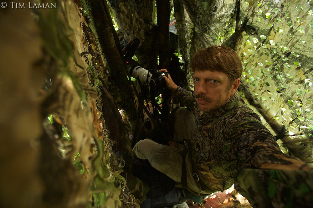 Photographer Tim Laman in his canopy blind at the display site of a Wallace's Standardwing Bird of Paradise in Halmahera, Indonesia.