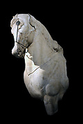 Forepart of a horse from the chariot-group surmounting the mausoleum. marble, about 250 BC.