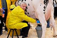 Roma 6 Febbraio 2015<br /> Manifestazione in Campidoglio, per &laquo;difendere il latte italiano&raquo;, organizzato dalla Coldiretti, e l&rsquo;Associazione italiana allevatori che  hanno portato le  mucche  nelle piazze italiane per sensibilizzare opinione pubblica e istituzioni sulla crisi del settore lattiero-caseario. Il ministro dell&rsquo;Ambiente, Gian Luca Galletti, munge una mucca in piazza del Campidoglio.<br /> Rome February 6, 2015<br /> Demostration  at the Capitol, to &quot;defend the Italian milk&quot;, organized by Coldiretti, and the Association of Italian farmers who brought the cows in the Italian squares to sensitize public opinion and institutions on the crisis of the dairy sector. The Environment Minister, Gian Luca Galletti, milking a cow in Capitol Square