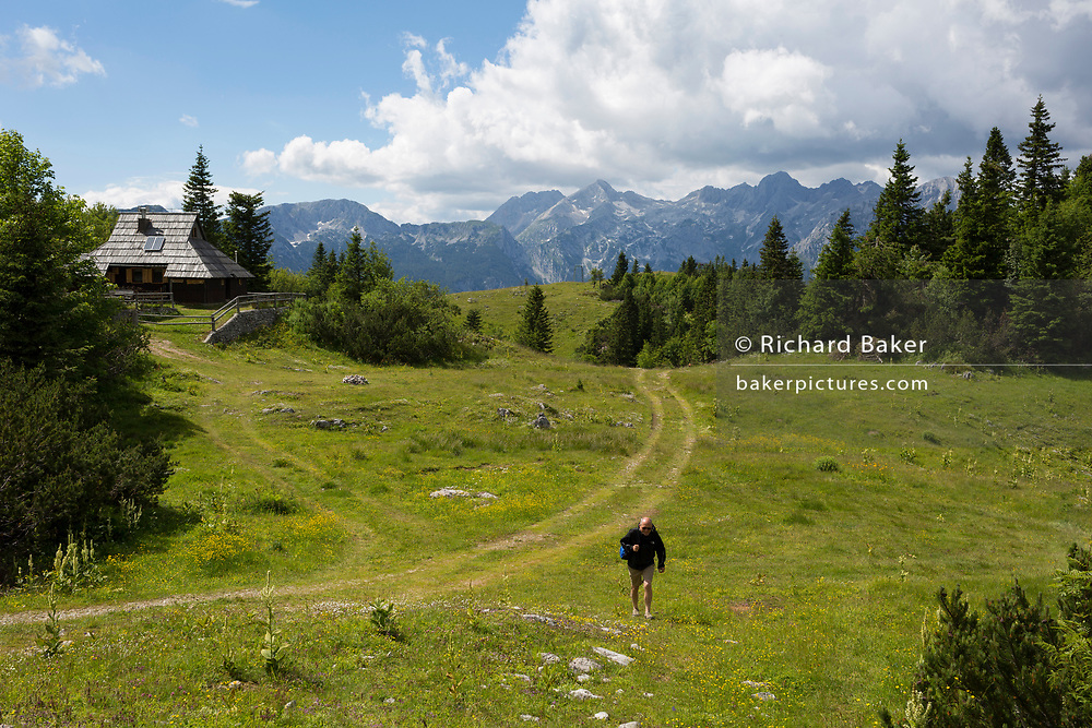 A walker climbs up a bank in Velika Planina, on 26th June 2018, in Velika Planina, near Kamnik, Slovenia. Velika Planina is a mountain plateau in the Kamnik–Savinja Alps - a 5.8 square kilometres area 1,500 metres (4,900 feet) above sea level. Otherwise known as The Big Pasture Plateau, Velika Planina is a winter skiing destination and hiking route in summer. The herders' huts became popular in the early 1930s as holiday cabins (known as bajtarstvo) but these were were destroyed by the Germans during WW2 and rebuilt right afterwards by Vlasto Kopac in the summer of 1945.