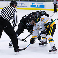 2nd year forward Tristan Frei (13) of the Regina Cougars in action during the Men's Hockey Home Opener on October 6 at Co-operators arena. Credit: Arthur Ward/Arthur Images
