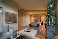 Spacious living room interior with bamboo houseplant