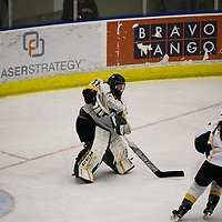 3rd year goalie Jane Kish (31) of the Regina Cougars in action during the Women's Hockey home game on November 17 at Co-operators arena. Credit: Arthur Ward/Arthur Images