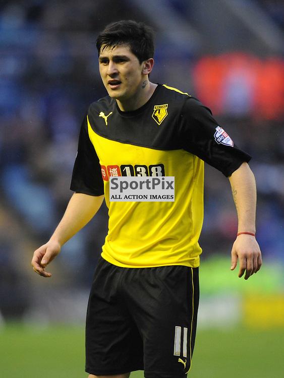 Fernando Foresestieri Watford, Leicester City v Watford, Sky Bet Championship, Saturday 8th Febuary 2014