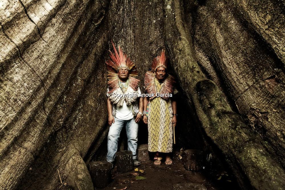 Agostinho Muru Huni Kuin et Sabindo Huni Kuin, homme de savoir du peuple Huni Kuin offrant un hommage à la Samauma. L'arbre des grands esprits et arbre sacré pour les communautés amérindiennes.
