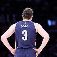07 December 2014: New Orleans Pelicans center Omer Asik (3) rests during the New Orleans Pelicans 104-87 victory over the Los Angeles Lakers, at the Staples Center, Los Angeles, California, USA.