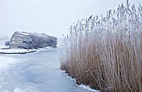 ST. JANSKLOOSTER - Rietdekker Bert Lok en zijn medewerker Klaas maken in de winter dankbaar gebruik van het ijs om bij het rietland te komen en daar het wiedenriet te maaien en te bossen.