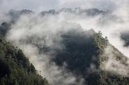 Salento, Quind&iacute;o, Colombia - 05.09.2016        <br /> <br /> Impression of the Colombian coffee region. Fog lays over the mountains and forests near the village Salento in the central range of the Colombian Andes Mountains.<br /> <br /> Eindruecke aus der kolumbianische Kaffeeanbauregion. Nebel zieht ueber die Bergen und Waelder nahe des Dorfs Salento in der Zentralkordillere der kolumbianischen Anden.<br /> <br /> Photo: Bjoern Kietzmann