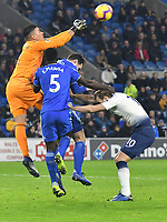 Football - 2018 / 2019 Premier League - Cardiff City vs Tottenham Hotspur<br /> <br /> Neil Etheridge Cardiff City punches clear as Harry Kane of Spurs challenges   .. at the Cardiff City Stadium<br /> <br /> Credit:: COLORSPORT/WINSTON BYNORTH
