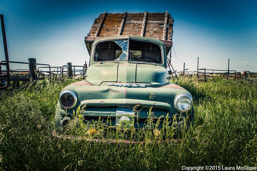 Alberta Canada, Vintage Fargo Truck in grass
