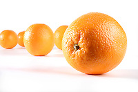 Oranges on white background - studio shot