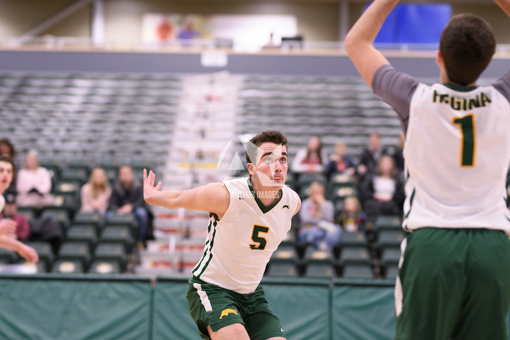 5th year middle blocker Eric Robb (5) of the Regina Cougars in action during Men's Volleyball home game on January 13 at Centre for Kinesiology, Health and Sport. Credit: /Arthur Images 2018