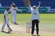 WICKET - Umpire Billy Taylor gives Harry Dearden LBW to Andrew Slater during the Specsavers County Champ Div 2 match between Glamorgan County Cricket Club and Leicestershire County Cricket Club at the SWALEC Stadium, Cardiff, United Kingdom on 17 September 2019.
