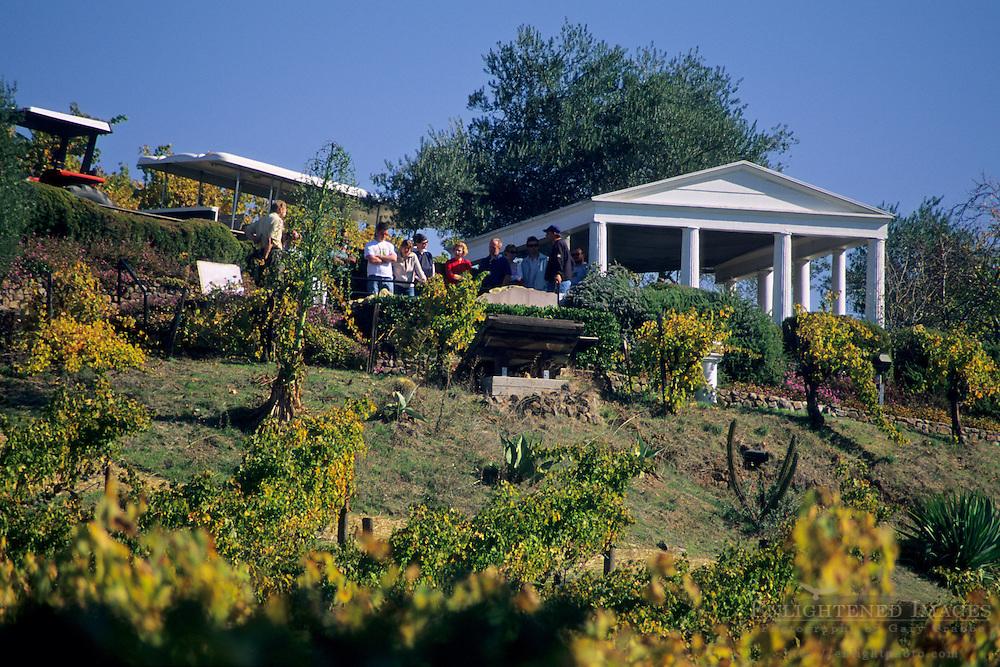 Vineyard tour, Benziger Family Winery, near Glen Ellen, Sonoma County, California