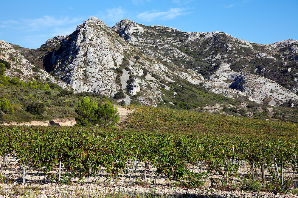 Vineyards run right up to the base of the Alpilles, here the plateau of La Caume.  Fifteen miles long and as much as 1270 feet high, the Les Alpilles mountain chain runs between the Durance and Rhone rivers in Provence, southern France.  This view is from the D5, immediately south of Glanum, en route to Les Baux.