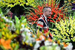 © Licensed to London News Pictures. 20/05/2013. London, UK A man walks past a colourful display. Press day at Chelsea Flower Show 2013. The centenary edition of the show attracts large number of visitors and is already sold out before opening day. Photo credit : Stephen Simpson/LNP
