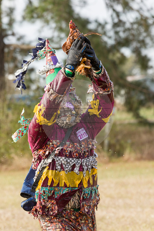 Traditional Cajun Mardi Gras costumed reveler holds up the chicken he caught during the Courir de Mardi Gras chicken run on Fat Tuesday February 17, 2015 in Eunice, Louisiana. Cajun Mardi Gras involves costumed revelers competing to catch a live chicken as they move from house to house throughout the rural community.