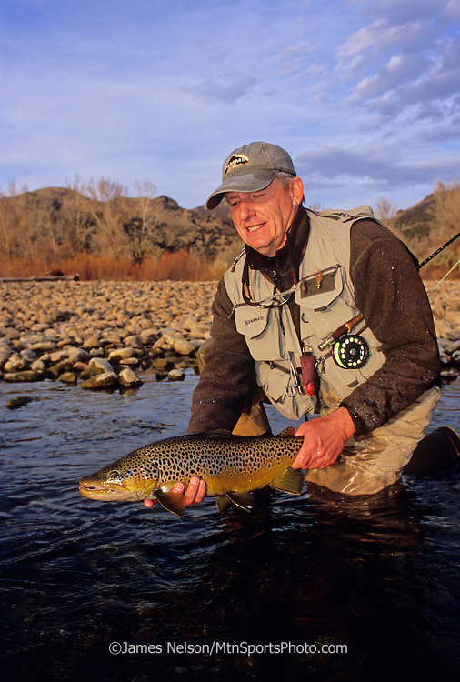 08199-D. An fly fisherman admires a large brown trout caught on during a fall afternoon on the South Fork of the Snake River, Idaho.