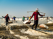 10 FEBRUARY 2016 - BAN LAEM, PHETCHABURI, THAILAND: Salt field workers carry freshly gathered salt to a salt barn in Phetchaburi province, Thailand. The salt harvest in Thailand usually starts in February and continues through May. Salt is harvested in many of the provinces along the coast, but the salt fields in Phetchaburi province are considered the most productive. The salt fields are flooded with sea water, which evaporates off leaving salt behind. Salt production relies on dry weather and producers are hoping the current drought will mean a longer harvest season for them.      PHOTO BY JACK KURTZ