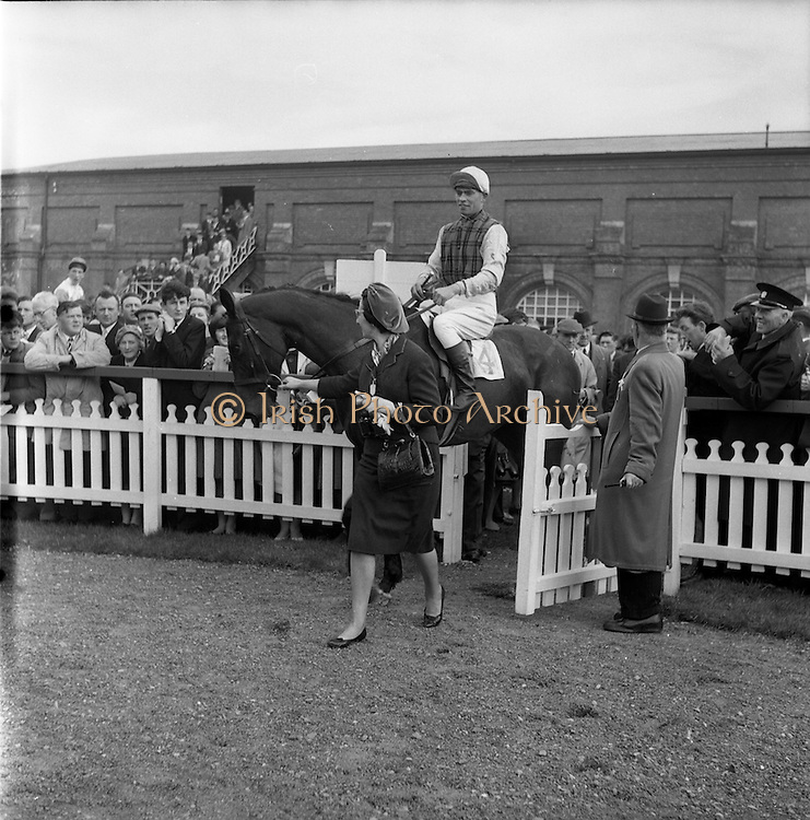 23/04/1962<br /> 04/23/1962<br /> 23 April 1962<br /> Irish Grand National at Fairyhouse<br /> Mrs. Frank Stafford, of Wexford, leading in Kerforo with L. McLoughlin up after Kerforo's win at the Irish Grand National on Easter Monday 1962.