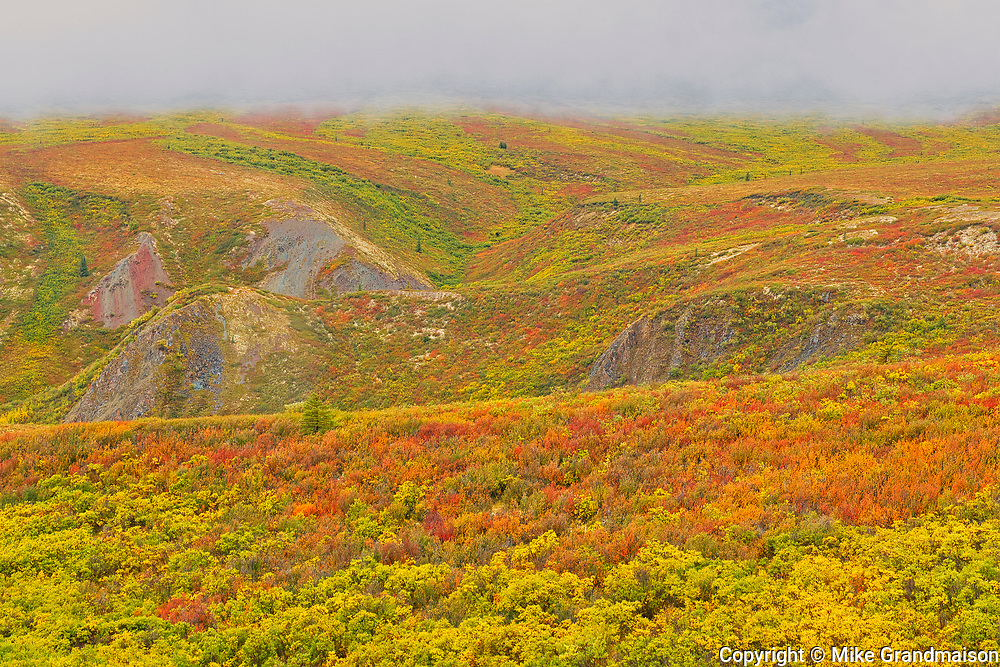 Autumn on the Dempster Highway<br />The Dempster Highway<br />Yukon<br />Canada