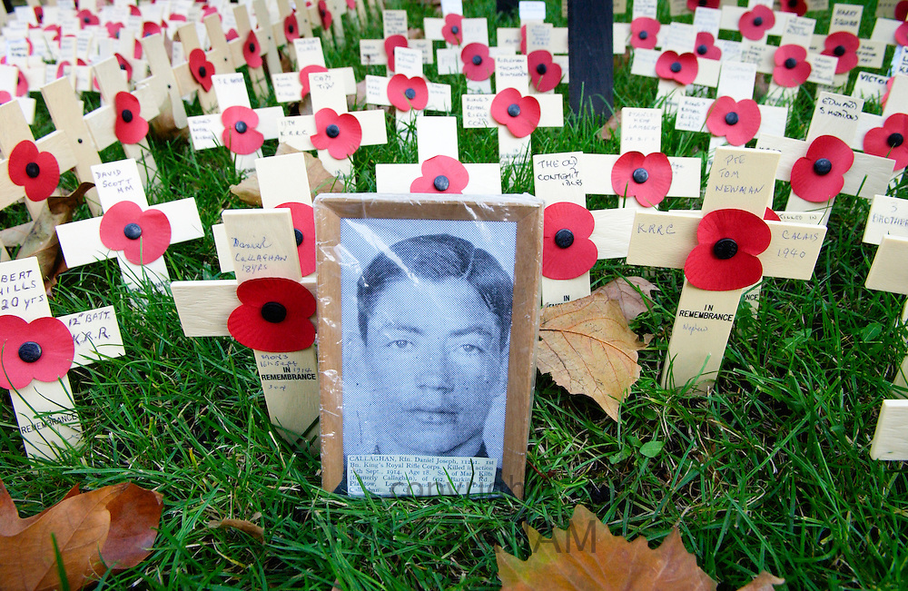Poppies and crosses of remembrance and photograph for war dead soldier at St Margaret's Church in Westminster, London