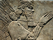 Relief : King Ashurnasirpal II and genius 9th Century BC Kalchu (Nimrud, northern Iraq) alabaster.