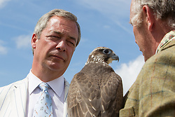 "© Licensed to London News Pictures. 31/07/2015. Leeds , UK . NIGEL FARAGE with "" Thunder "" the Sacre Falcon at the CLA GameFair ( Country Landowners Association ) at Harewood House in Yorkshire . Photo credit: Joel Goodman/LNP"