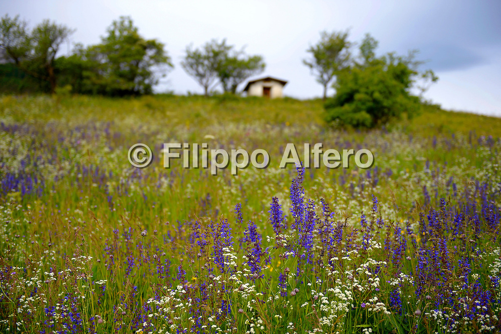 &copy; Filippo Alfero<br /> Rifugio Guido Rey, Pr&egrave; Meunier, Beaulard<br /> Oulx (TO), 28/06/2013