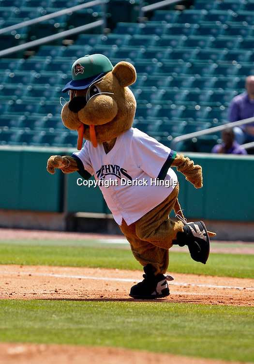 2009 April 20: New Orleans Zephyrs mascot Boudreaux performs during a AAA Minor League Baseball game between the New Orleans Zephyrs AAA affiliate for the Florida Marlins and the Nashville Sounds a AAA affiliate for the Milwaukee Brewers at Zephyrs Stadium in Metairie, Louisiana.