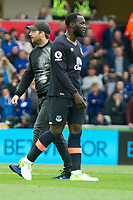 Football - 2016 / 2017 Premier League - Swansea City vs. Everton<br /> <br /> a pitch invader, fan walks across the pitch & stops play, Romelu Lukaku in foreground at Liberty Stadium.<br /> <br /> COLORSPORT/WINSTON BYNORTH