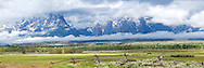 """Grand Tetons, Jackson Hole, Wyoming<br /> <br /> For production prints or stock photos click the Purchase Print/License Photo Button in upper Right; for Fine Art """"Custom Prints"""" contact Daryl - 208-709-3250 or dh@greater-yellowstone.com"""
