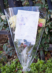 © Licensed to London News Pictures. 07/03/2019. London, UK. A floral tribute, brought by a member of the public, is placed next to the crime scene in North Birkbeck Road in Leyton in east London where a murder investigation has been launched after a man in his twenties was stabbed on Wednesday. Photo credit: Peter Macdiarmid/LNP