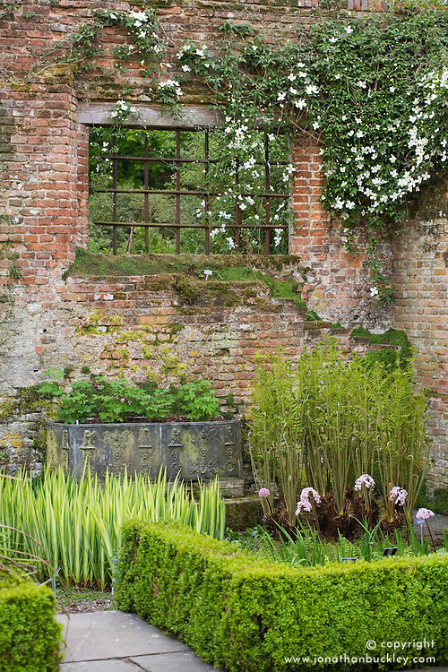 Iris, ferns and clematis in a corner between the Tower Lawn and Rose Garden at Sissinghurst Castle