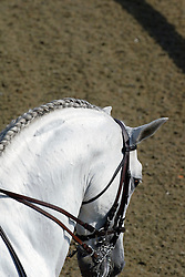 European Dressage Championships Hickstead 2003<br /> Photo © Hippo Foto