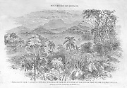 "From ""Souvenirs of Ceylon"" 1868 published by Ferguson."