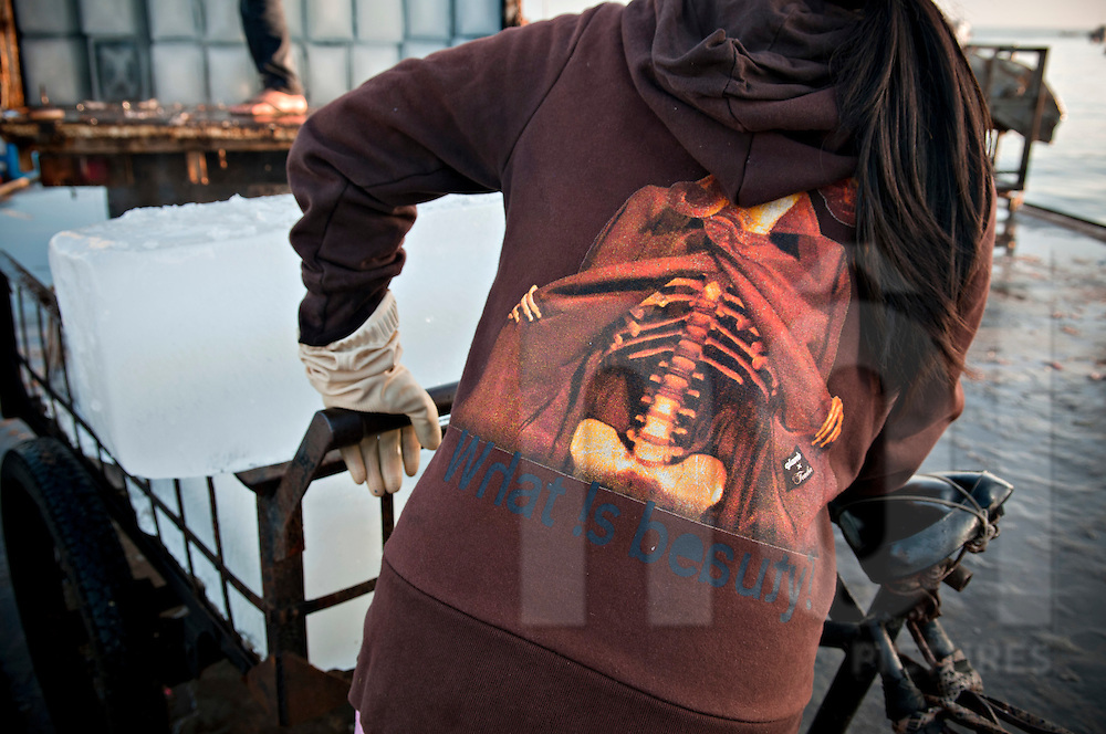 A woman pushing an ice cart wears a funny shirt showing a skeleton opening a jacket to show its ribs. Nha Trang, Vietnam, Asia