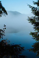 Willaby Creek Campground, Lake Quinault. Olympic National Park.