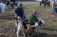 Fox Hunting.Wyfold, England, February 14th, 2005 - Neal's farm kids playing with hounds before hunting. hounds are really friendly with kids and kids love them.