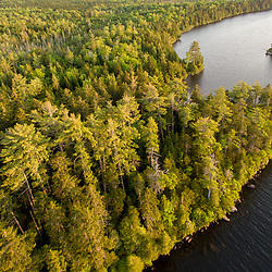 An aerial view of Long Pond in Maine's 100 Mile Wilderness.