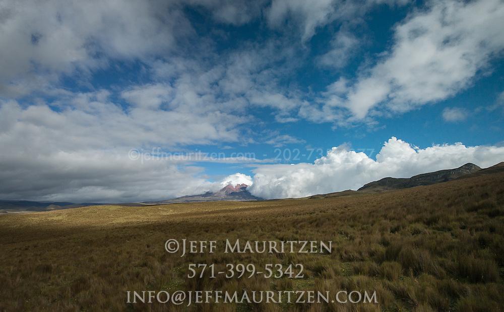 Paramo grasslands surround Cotopaxi volcano in Ecuador.