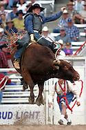 Bull Rider, 2004 Cheyenne Frontier Days Rodeo, Cheyenne WY, July 2004