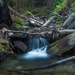 Limekiln Creek Detail, Limekiln State Park, Big Sur, California, US