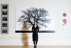 Alanna Brady, Development Manager at RSA with three works by Kate Whiteford OBE RSA from L to R Wings of Desire 2018 (emily Bronte's Merlin Hawk, Nero), False Perspectives 2019 'Now There, I make a comma…', Punctuation Series 2016 (Semi-Colon) at the RSA Open Exhibition of Art. The RSA Annual Exhibition is the most extensive exhibition of contemporary art and architecture in Scotland. The Annual Exhibition has evolved over the years, showcasing Scottish art alongside invited international artists. The exhibition runs from 2 November to 11 December 2019 at the RSA Building, Edinburgh.